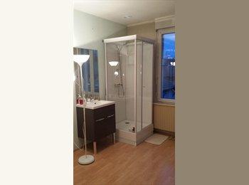 Appartager FR - 2 grandes chambres meubles proche Croix Rouge  - Reims, Reims - 335 € /Mois