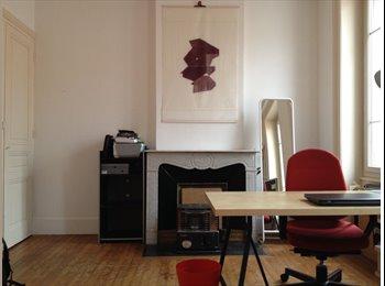 Appartager FR - Chambre meublée (ou non, au choix) - colocation- 300 € CC  - Saint-Etienne, Saint-Etienne - 300 € /Mois