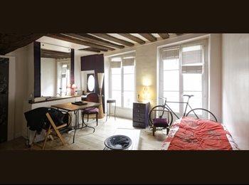 Appartager FR -  1 Chambre Appartement ensoleillé près de Sorbonne Université Paris, charges comprises - 1er Arrondissement, Paris - Ile De France - 1400 € /Mois