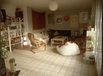 Appartager FR - Recherche colocataire pour appartement sur l'Ile de nantes - Île de Nantes, Nantes - 257 € /Mois