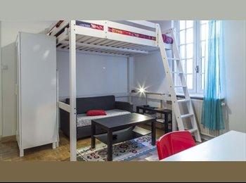 Appartager FR - Trendy Studio à louer dans Arr. 8 à Lyon - 8ème Arrondissement, Lyon - 500 € /Mois