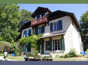 Appartager FR - Belle et grande maison en colocation! - Ecully, Lyon - 220 € /Mois