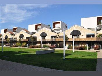 Colocation bordeaux chambre louer bordeaux for Appartement bordeaux 80m2