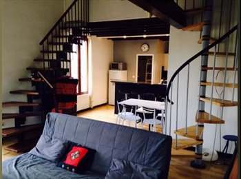 Chambre dans grand appartement centre ville de Montpellier