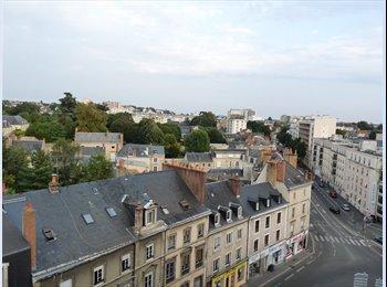 Appartager FR - Coloc de 4 personnes dans le centre ville, Le Mans - 345 € /Mois