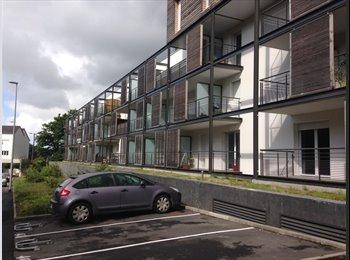 Appartager FR - Cherche colocataire Brest secteur petit kerzu - Brest, Brest - 250 € /Mois