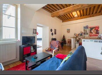 Appartager FR - Coloc sympa Croix Rousse - 4ème Arrondissement, Lyon - 415 € /Mois