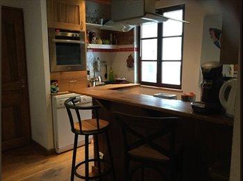 Appartager FR - Colocation en plein cœur d'annecy - Annecy, Annecy - 525 € /Mois
