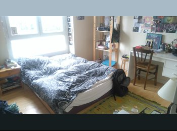 Chambre dans colocation