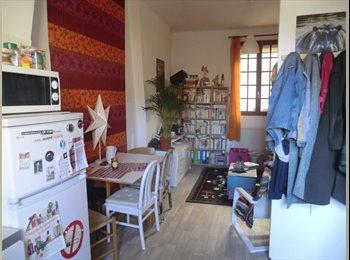 Appartager FR - Chambre dispo dans colloc à deux aux chartrons - Grand Parc Chartrons, Bordeaux - 350 € /Mois