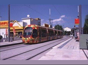 Appartager FR - Colocation chambre 14m2 dans 75m2 tram 2 mas Drevon  - Croix-d'Argent, Montpellier - 400 € /Mois