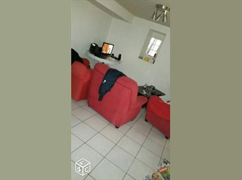 Appartager FR - Appartemment 60 m2 - Albi, Albi - 260 € /Mois
