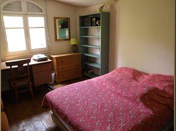Appartager FR - chambre dans maison toulousaine proche de la place dupuy - Dupuy, Toulouse - 380 € /Mois