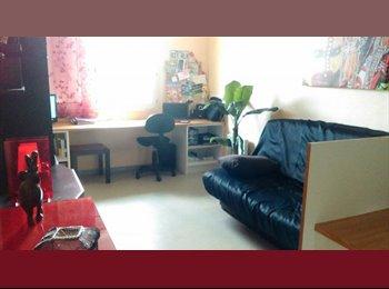 Appartager FR - Location Appart' Juillet-Aout Faculté de pharmacie (Charges comprises) - Empalot - Saint Agne - Sauzelong, Toulouse - 350 € /Mois