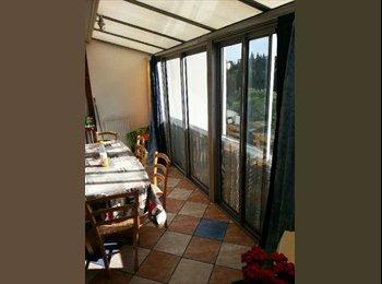 Appartager FR - Colocation  - Les Cévennes, Montpellier - 390 € /Mois