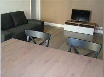 Colocation dans appartement meublé