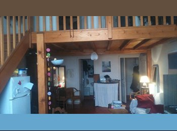 Appartager FR - Colocation Lyon 1er - 1er Arrondissement, Lyon - 403 € /Mois