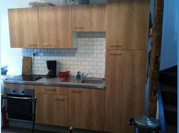 Appartager FR - Appartement pour 2 étudiants Valenciennes centre , Valenciennes - 325 € /Mois