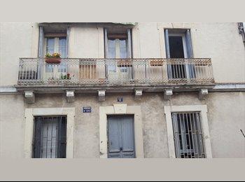 Appartager FR - Coloc aux Arceaux, Montpellier - 345 € /Mois