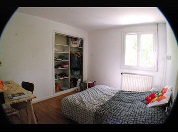 Appartager FR - CHU,  ST Serge, T5 duplex 130m2 4 chambres + terrasse 45m2, Angers - 370 € /Mois