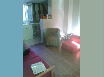 Appartager FR - Chambre sympa dans un appartament bien placé à Tours centre (Vieux Tours), Tours - 300 € /Mois