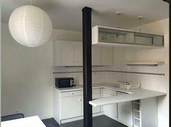Appartager FR - Recherche colocataire pour grand appartement meublé, Krutenau, Strasbourg - 425 € /Mois