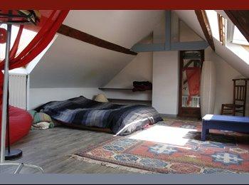 Appartager FR - Chambre 30 m2 dans maison en collocation, 3 mn de l'Esad, l'Esiee, fac d'art, Amiens - 350 € /Mois