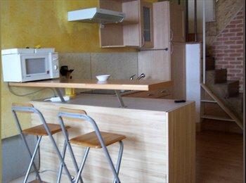Appartager FR - Duplex entièrement meublé, Lyon - 1120 € /Mois
