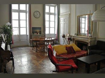 Appartager FR - Sous location Aout BELLECOUR , Lyon - 500 € /Mois