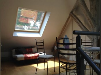 Appartager FR - Loue chambre  en colocation dans maison de charme Saint Jean le Blanc (45650 ), Saint-Jean-le-Blanc - 400 € /Mois