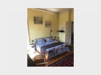 Grande chambre chez l'habitant dans bel appartement ancien