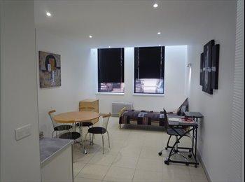 Appartager FR - Studio neuf meublé, Mulhouse - 320 € /Mois