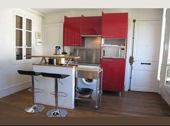 Appartager FR - beau studio meublé 21m² rue du moulin aux moines, La Chapelle-Saint-Aubin - 550 € /Mois