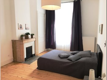 Hypercentre appartement bourgeois  en cours de rénovation