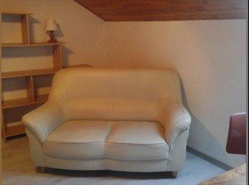 Appartager FR - Jolie et grande chambre très agréable., Besançon - 300 € /Mois