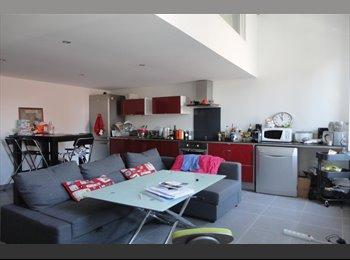 Appartager FR - Chambre à louer, Montpellier - 420 € /Mois
