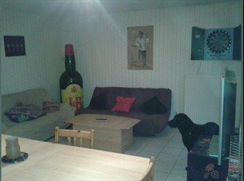 Appartager FR - Colocation dans maison a OLIVET, Orléans - 233 € /Mois