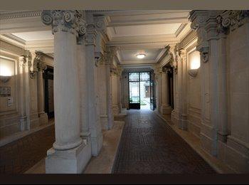 Grande chambre à louer pour étudiant