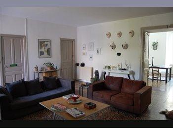 Appartager FR - Chambre à louer dans appartement centre ville, Alès - 400 € /Mois