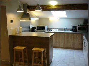 Appartager FR - Foyer étudiant de la paroisse catholique de Bron, Lyon - 340 € /Mois