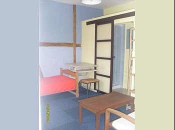 Appartager FR - Loue chambre colocation 1km IUT  Grillenbreit, Colmar - 295 € /Mois