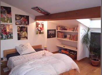 Appartager FR - chambre chez l 'habitant quartier St Simon, Toulouse - 330 € /Mois