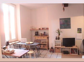 Appartager FR - Appartement aux Carmes, Toulouse - 400 € /Mois