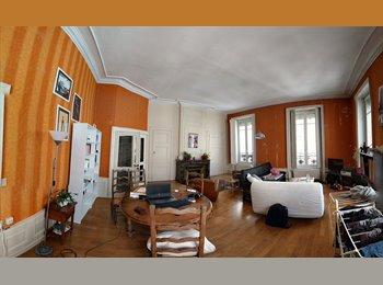 Appartager FR - Colocation appart 133 m2 Lyon 2, Lyon - 450 € /Mois
