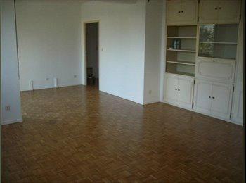 Appartager FR - Appartement d'amis, Toulouse - 380 € /Mois