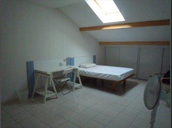 Appartager FR - chambre proche du centre ville et de la gare, Alès - 300 € /Mois