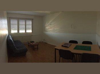 Appartager FR - Recherche colocataire, Strasbourg - 297 € /Mois