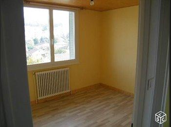 Appartager FR - Colocation appartement annemasse, Annemasse - 400 € /Mois