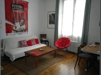 Appartager FR - Chambre spacieuse dans joli appart proche de Gare et commerces, Angers - 335 € /Mois