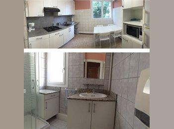 Appartager FR - Loue chambre pour colocation dans F4 Meublé, Pau - 400 € /Mois